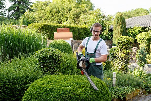 Secret To The Perfect Garden